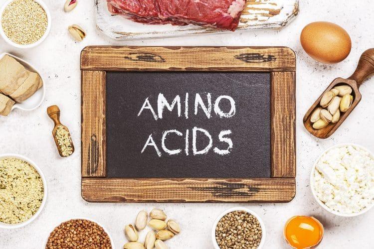 Food rich of amino acids