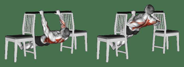 Australian Pull Ups Between Chairs