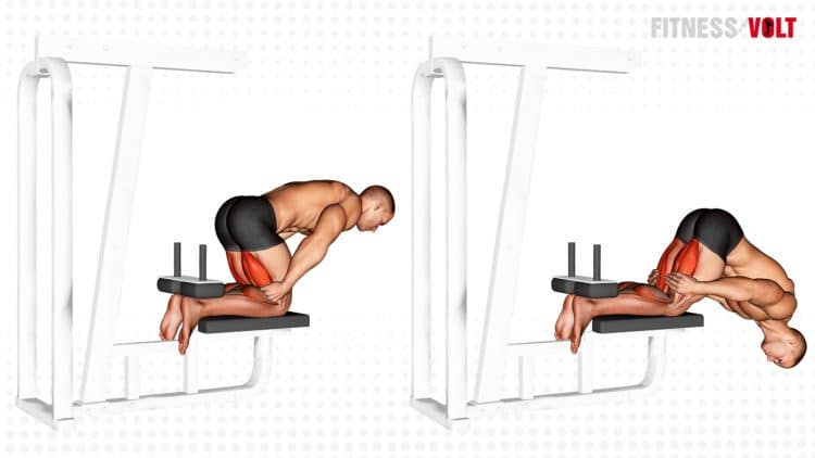 Inverse Leg Curl With Bench Support