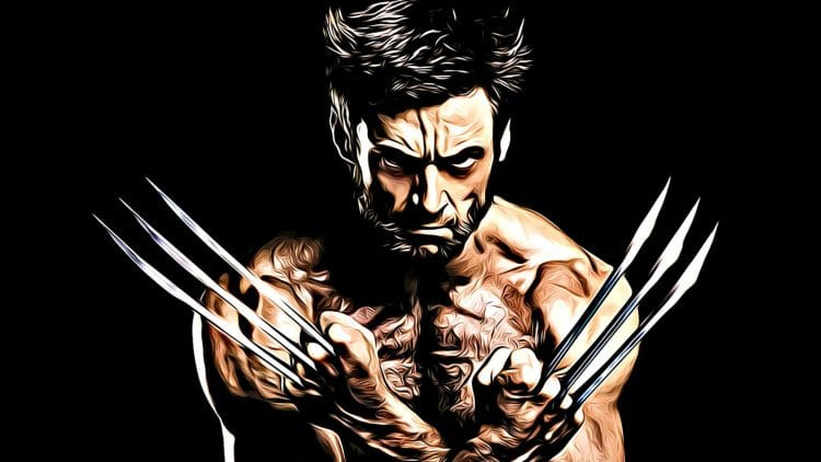 Wolverine Workout Program