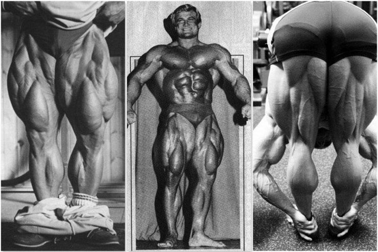 Greatest Legs The World Of Bodybuilding