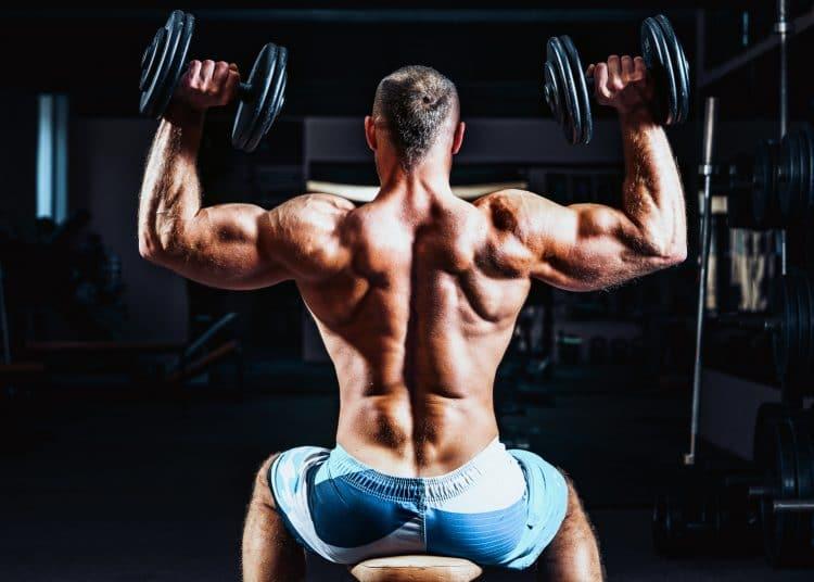 Training Shoulders