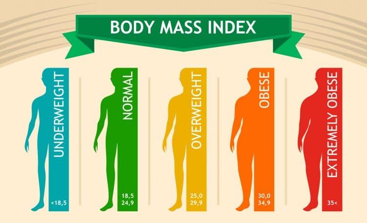 Body Mass Index Infographic