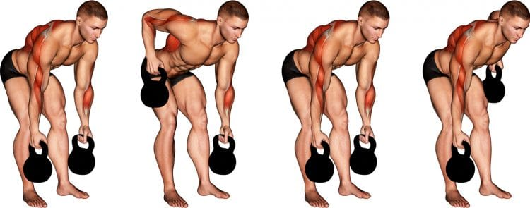 Kettlebell Alternating Row Muscles Worked