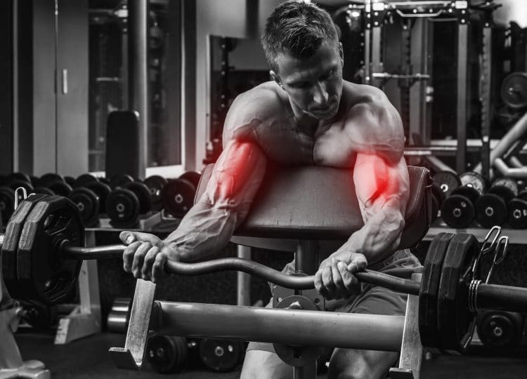 Preacher Biceps