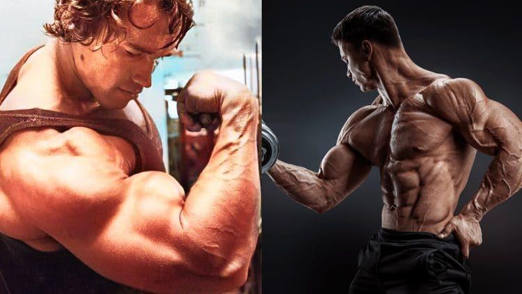 Sleeve Busting Arm Training Program
