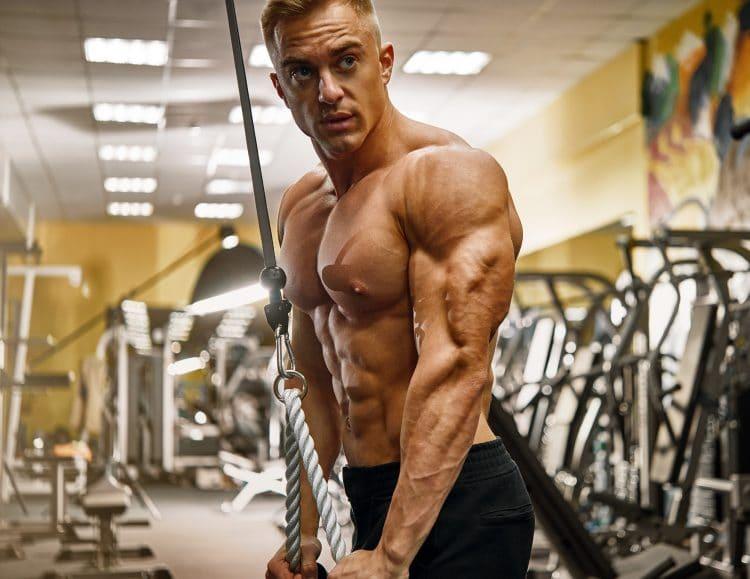 Bodybuilder Workout Triceps Pushdown
