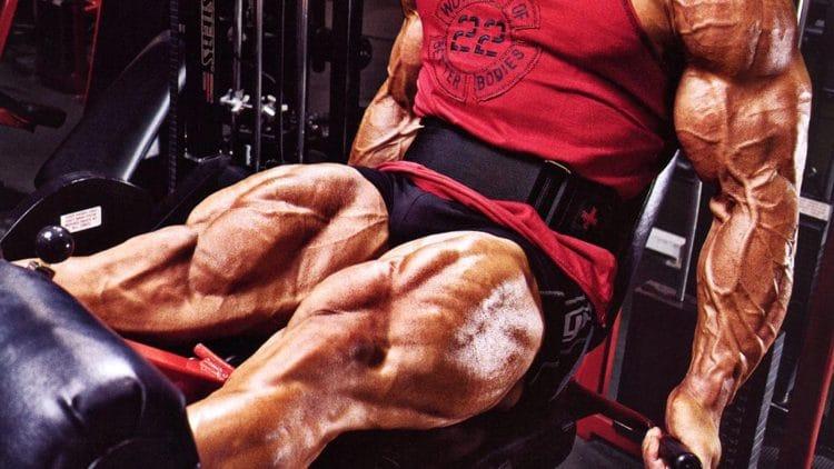 Best Leg Day Workouts